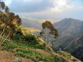 Eritrean mountains