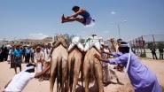 Camel jumping