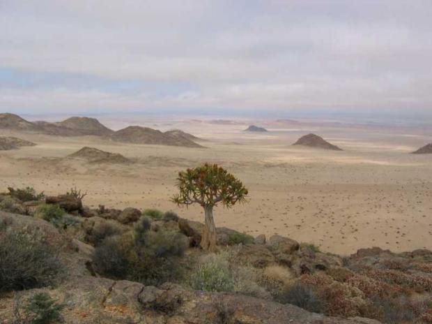 Sperrgebiet National Park