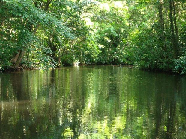 tortuguero-canals-costa-rica